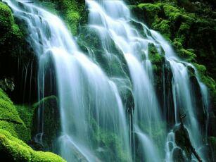 Quale acqua berrò oggi? di Cosimo Alberto Russo